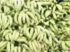 jamaican-recipes-cooking-green-banana-jerk-ital