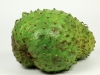 jamaican-recipes-cooking-soursop