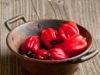 jamaican-recipes-food-scotch-bonnet-chilli-jerk